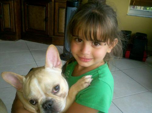 Lost Male Dog last seen Near NW 134th Ave & NW 4th Ct, Plantation, FL 33325