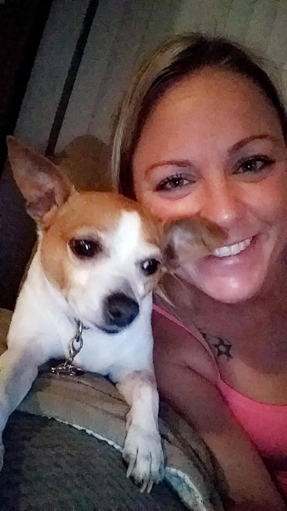 Lost Female Dog last seen Near SW 84th Way & Gatehouse Rd, Plantation, FL 33324