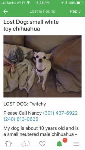 Lost Male Dog last seen Near Grenoble Dr & Grenoble Ct, Rockville, MD 20853