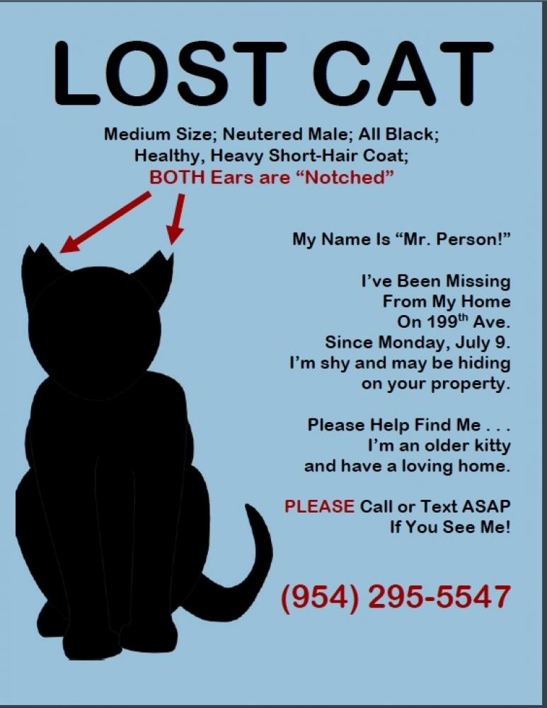 Lost Male Cat last seen Near SW 54th Pl & SW 199th Ave, Fort Lauderdale, FL 33332