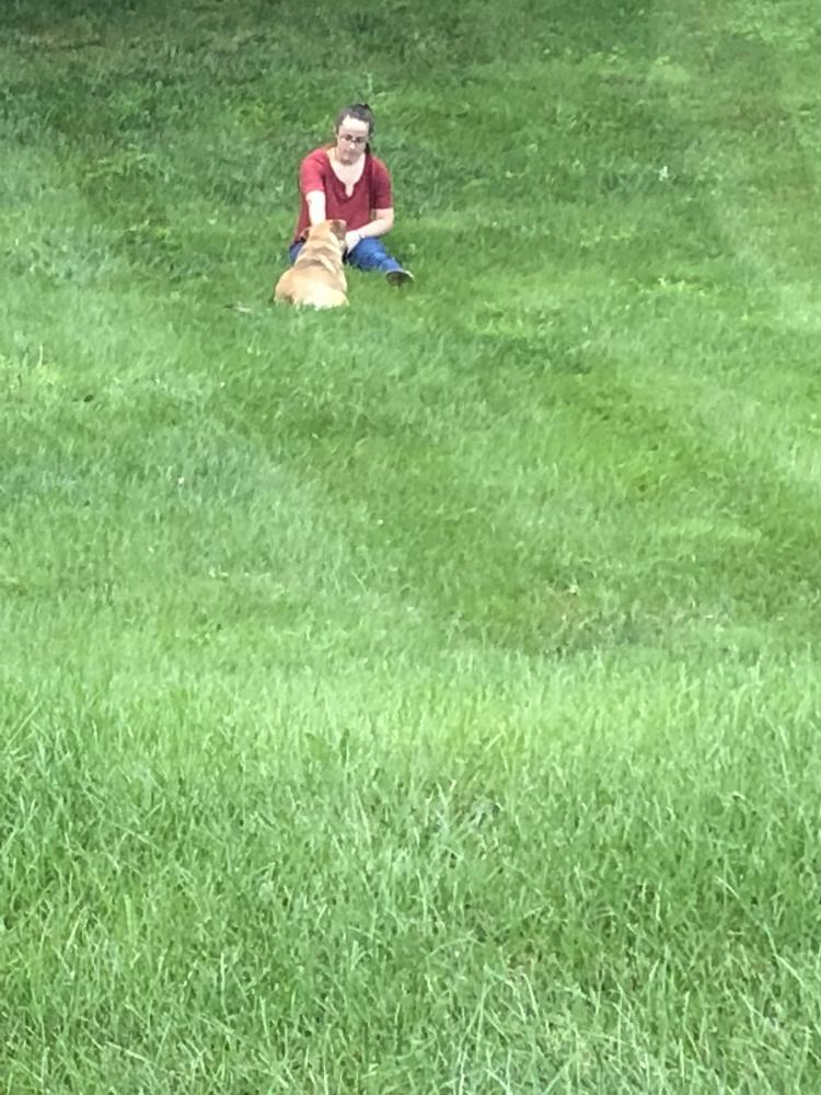Found/Stray Male Dog last seen Near Thornbury Dr & Chaucer Dr, Maple Glen, PA 19002