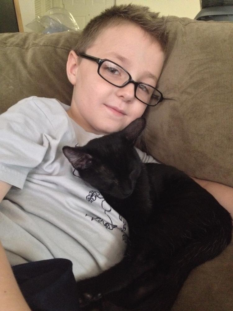 Lost Female Cat last seen Near NW 45th Way & NW 44th Way, Coconut Creek, FL 33073