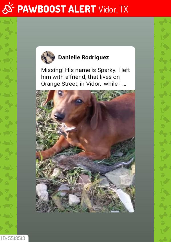 Lost Male Dog last seen Near Orange St & Needles St, Vidor, TX 77662