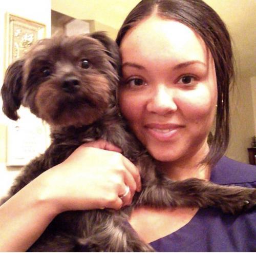 Lost Female Dog last seen Near Cobblewood Bend & Cobblewood Way, Chesapeake, VA 23320