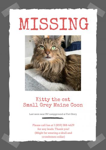Lost Male Cat last seen Fort Story RV park/ base housing , Virginia Beach, VA 23459