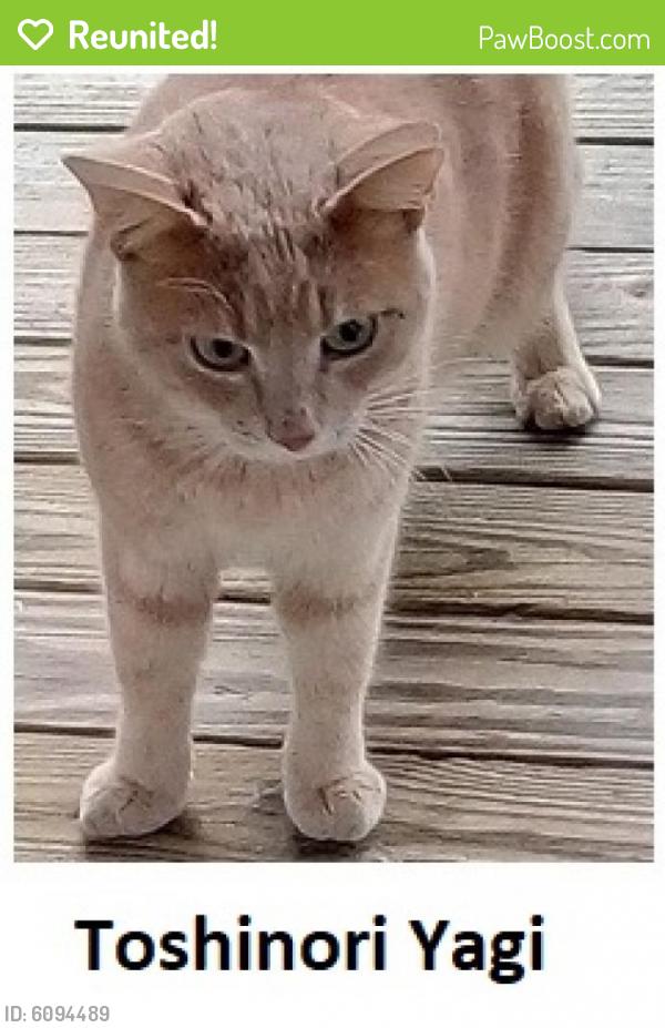 CAT:NC