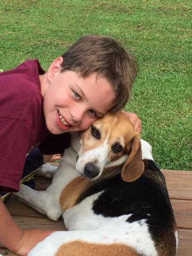 Lost Female Dog last seen Beauregard, Chesapeake, VA 23322