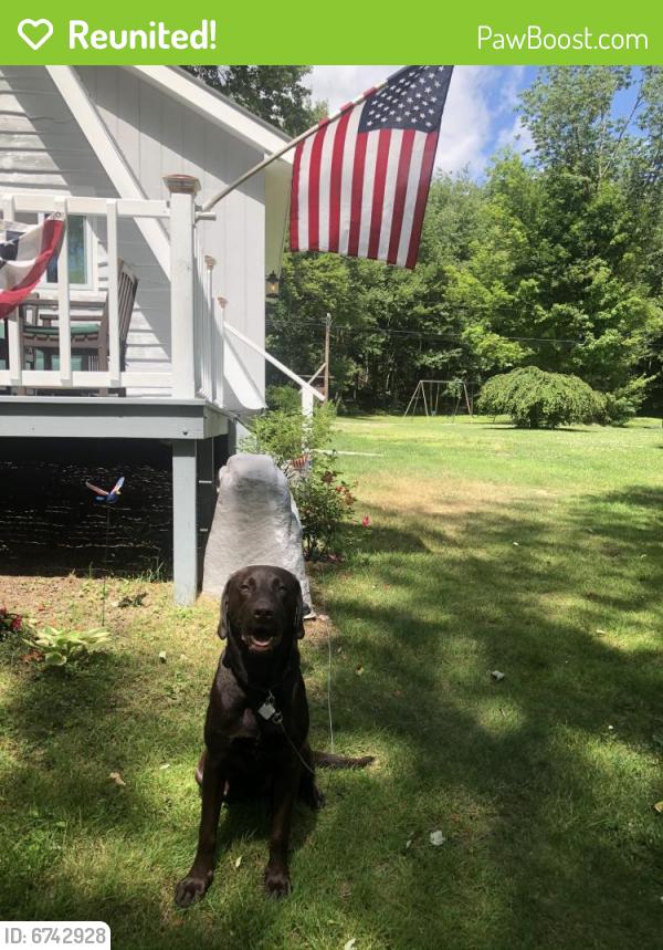 Reunited Male Dog last seen NA , Morris, NY 13808