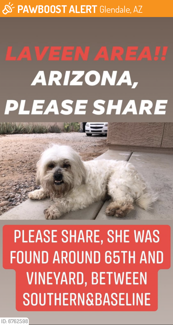 Found/Stray Male Dog last seen 67th Ave & Southern , Glendale, AZ 85301