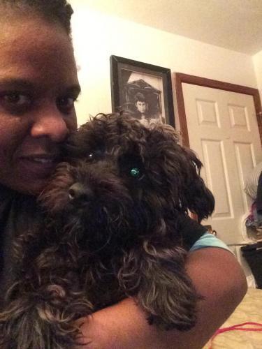 Lost Male Dog last seen 128_Tide mill Lane , Hampton, VA 23666