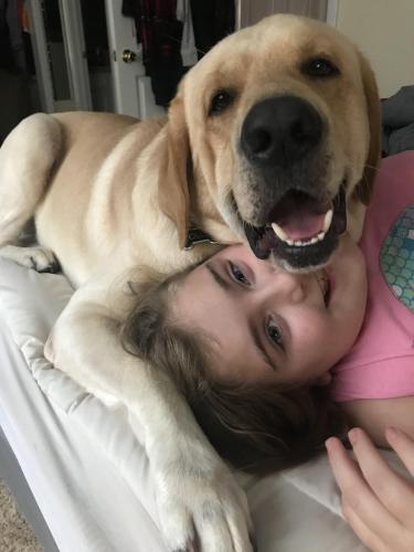 Lost Male Dog last seen Near cannon drive , Virginia Beach, VA 23454