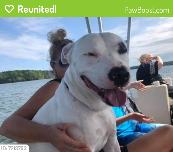 Reunited Male Dog last seen Lindmont and watson rd, Durham, NC 27704