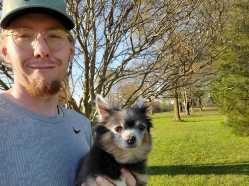 Lost Male Dog last seen Near Fernbank Court, Simpsonville, SC, USA, Simpsonville, SC 29681