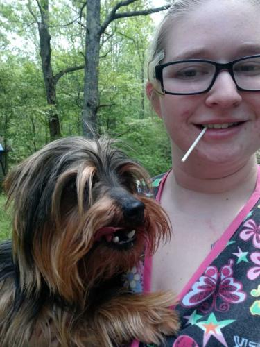 Lost Male Dog last seen Near Peden Road, Fountain Inn, SC, USA, Fountain Inn, SC 29644